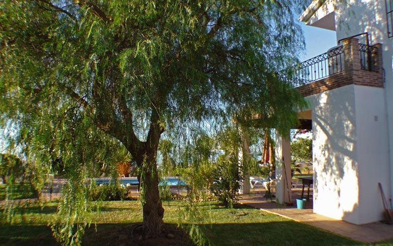 Jardin Bolero - Costa del Sol -